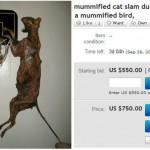 Gato momificado, gato momificado haciendo un mate, mummified cat slam dunking a mummified bird, ebay
