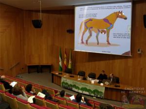 caballoponencia