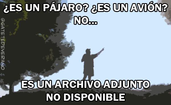 pajaroavion_nodisponible