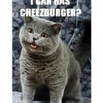 can i have a cheezburger